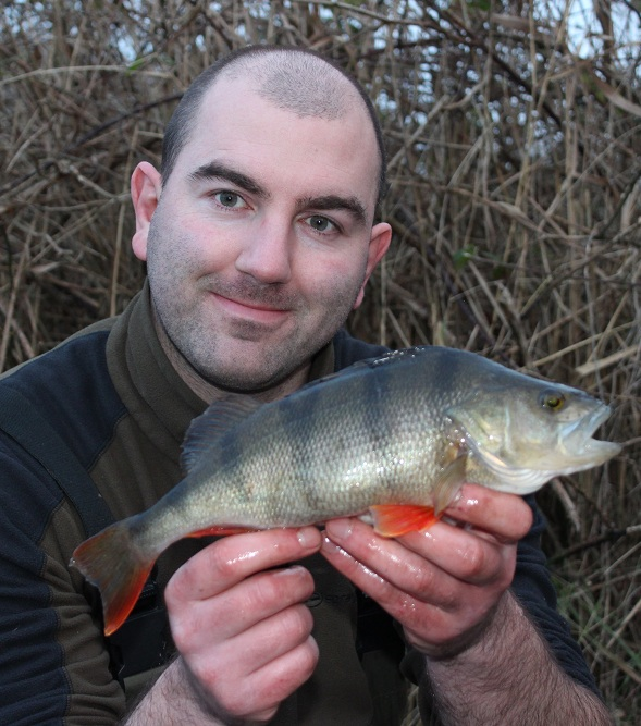 A nicely marked perch fell to the dropshot