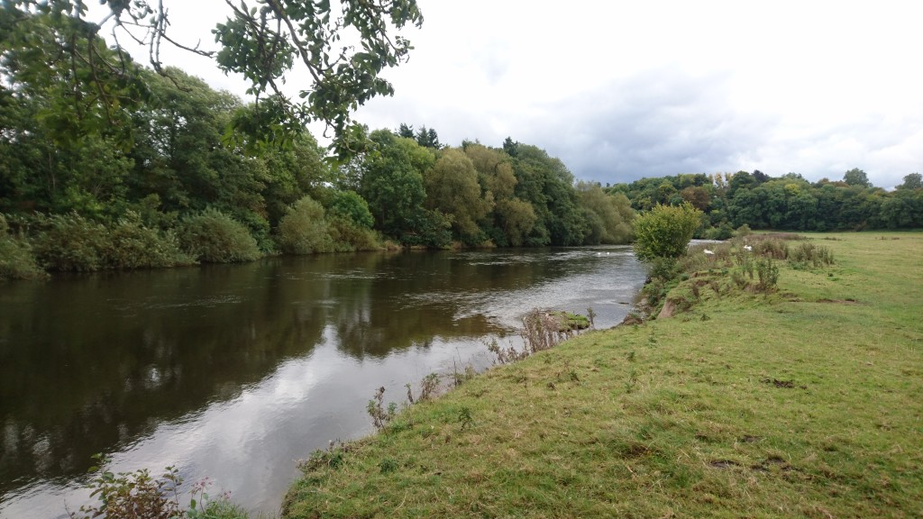 The River Wye above Hereford (Picture by Mike Linstead)
